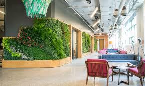 green wall office. Office Plants Green Wall