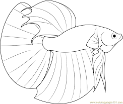 Coloring Page Fish Fish Simple Shapes Coloring Pages Dish Coloring