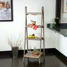living room ladder shelves ideas marvelous decoration contemporary space w wood display shelf