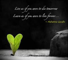 Live And Learn Quotes Delectable Mahatma Gandhi Live And Learn Quote
