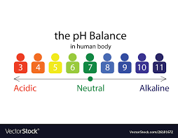 Body Scale Chart The Ph Balance Scale Chart In A Human Body