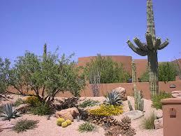 Small Picture Desert Backyard Design Backyard Landscape Design