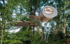 tree house ideas. Tree House Ideas