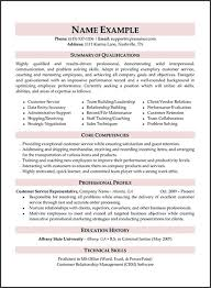Professional Resume Writers Nyc Awesome Top Resume Writing Services