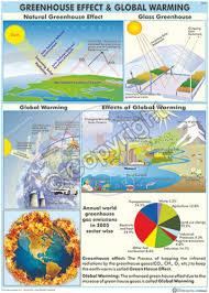 Enviromental Science Science Charts Nitrogen Cycle Chart