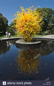 the sun glass sculpture by dale chihuly at the new york botanical garden in the bronx during the summer of 2006