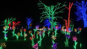 Meadowlark Gardens Winter Walk Of Lights Of The Lights
