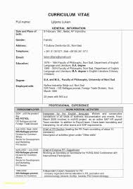 Cv Template In English Doc Hermoso Sample Resume Format Doc Download