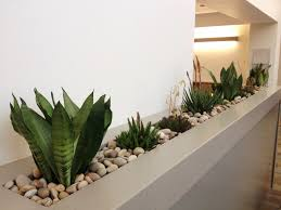 office planter boxes. green planter office boxes