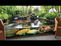 most beautiful backyard fish ponds