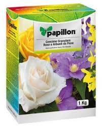Rosas Perfectas Consejos De Nuestros Expertos Sobre El Cuidado De Cuidados De Los Rosales