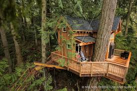From TV To Courtroom To The Market The Saga Of Seattleu0027s 475000 Pete Nelson Treehouse Man