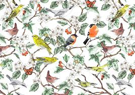 Bird Pattern Simple British Bird Gallery Jacqueline Colley