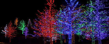 coastal maine botanical gardens aglow a winter wonderland the whole family will love