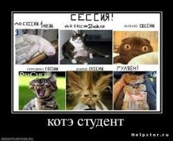 Интернет барахолка г Владивосток объявления ru Любовь Бугрова Дипломные работы