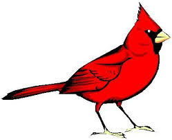 picture of red bird. Perfect Red Red Bird By Tulacoe  And Picture Of Red Bird