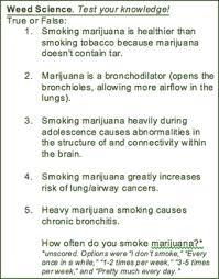 marijuana knowledge