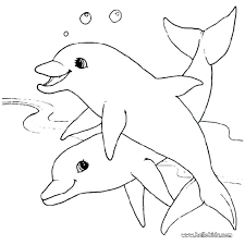 Dolphin Tale Coloring Pages Dolphin Tale Coloring Pages Dolphins