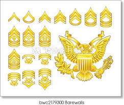 American Army Enlisted Rank Insignia Icons Art Print Poster