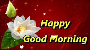 good morning msg good morning gif good morning messages good morning hd