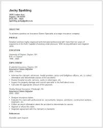 Some Samples Of Resume Some Examples Of Resume Related Post Examples Of Good Resume