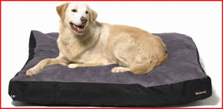 small dog beds on sale. Simple Small Extra Small Dog Bed Beautiful Pet Beds To Cheap  On Sale S