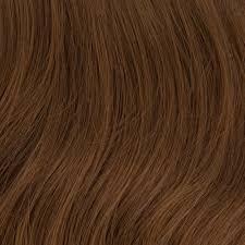 Fs4 27 Color Chart Sepia Color Chart Wigs Us