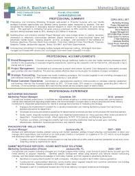 Digital Strategist Resume Buchan Lail Marketing Strategist Resume Package