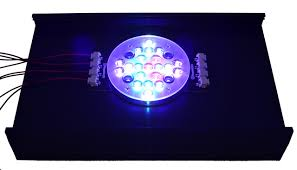 review new rapidled dimmable aurora fixture product review new rapidled dimmable aurora fixture