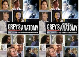 Greys Anatomy Temporada 10