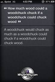 Siri Quote Interesting Top 48 Funniest SIRI Quotes POPHANGOVER