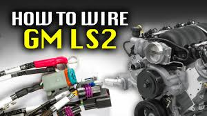how to wire an ls2 haltech diy youtube LS2 Wiring Conections at Ls2 Wiring Harness Conversion