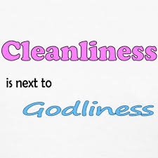 essay on cleanliness for kids