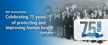 Nsf Org Chart Nsf International