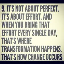 Effort Quotes Stunning 48 Effort Quotes And Sayings