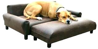 dog leather couch best for owners luxury scratched and dogs le leather couch and dogs