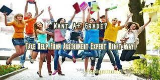 assignment expert myassignmenthelp com my assignment help assignment expert