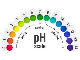 Ph Level Chart For Urine Vaginal Ph Balance Normal Levels And Natural Remedies