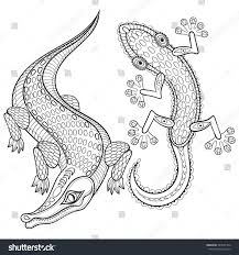 Small Picture Coloring Pages Animals Baby Lizard Coloring Pages Lizard