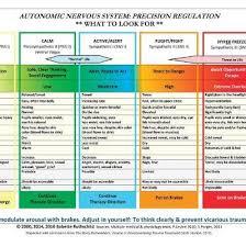 Autonomic Nervous System Table Laminated Card Babette