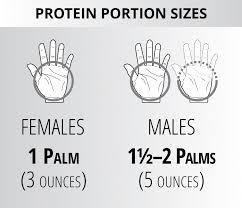 3 phase protein