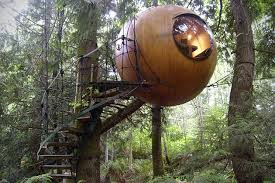 669 Best Tree Houses Images On Pinterest  Architecture Coolest Tree Houses
