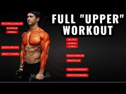 science based upper body workout for