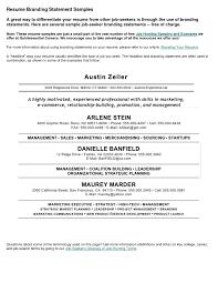 Best Resume Skills Statements Professional User Manual Ebooks