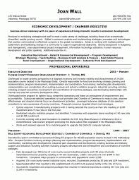 Non Profit Program Director Resume Sample