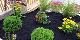 best mulch for garden. Wonderful For Mulch And Best For Garden W