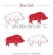 Wild Game Meat Cutting Chart