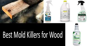 best mold s for wood concrete