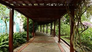 First Person View Move Through Wooden Pergola Walkway, Shaded Area In  Hibiscus Garden, The Lake Gardens, Perdana Botanical Garden, KL Central  Park.