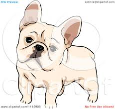 cute french bulldog clipart. Exellent French Clipart Cute French Bulldog  Royalty Free Vector Illustration By BNP  Design Studio On N